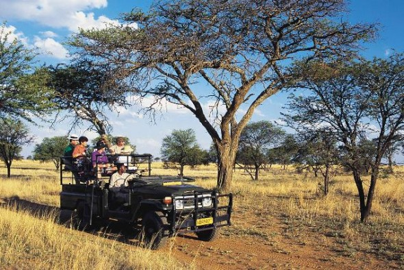 Taking a safari in Africa