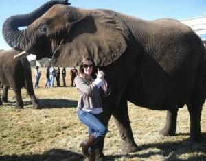 Dream Safari trips Africa