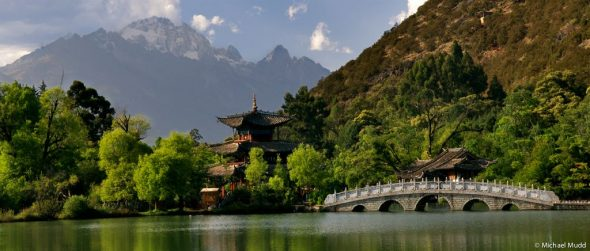 Wild China 1